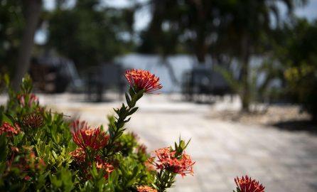 Marco Island Lakeside Inn exterior floral closeup