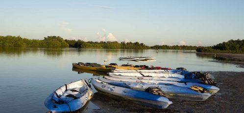 Marco Island area kayaks at sunset
