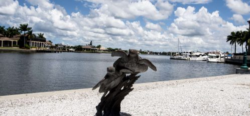 Marco Island area sea turtles statue